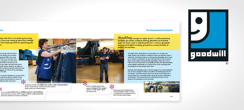Goodwill Annual Reports